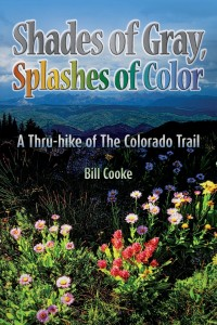 Shades of Gray Splashes of Color book
